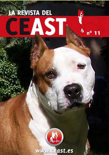 CEAST 11